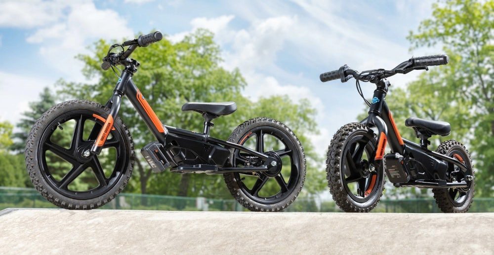 Harley-Davidson Electric Balance Bike (3)