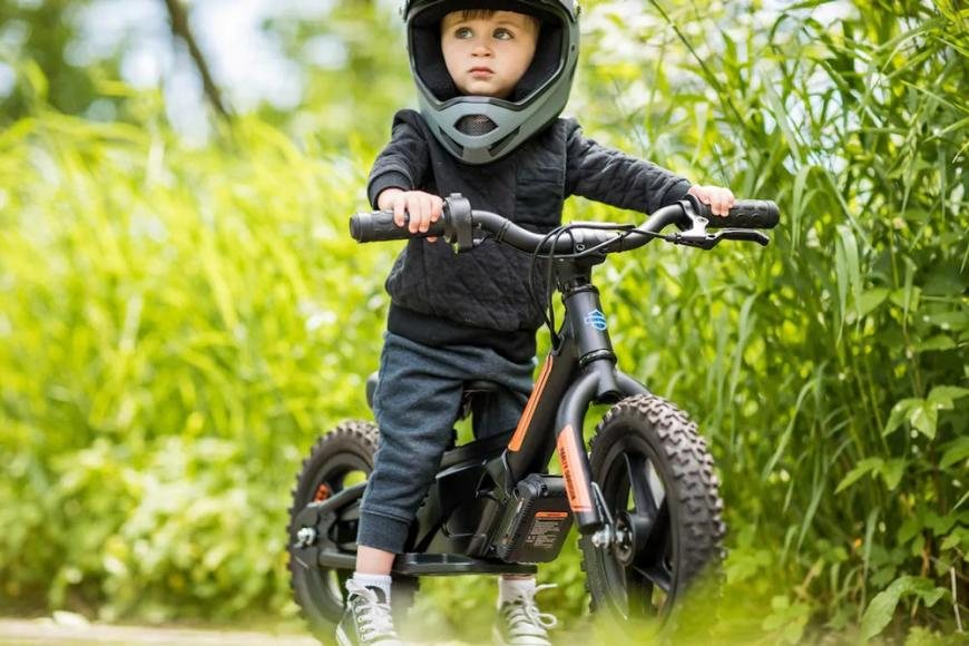 Harley-Davidson Electric Balance Bike (5)