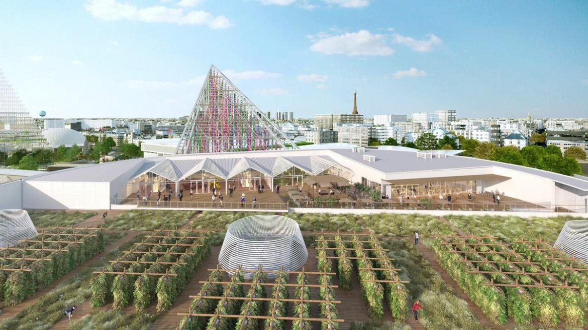 The size of three football fields - Paris will soon be home to the worlds largest rooftop urban farm -