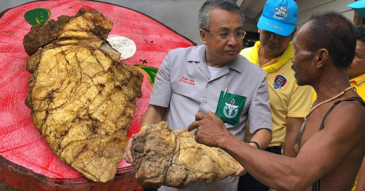 A Thai fisherman gets the catch of his life - A lump of whale vomit worth an estimated $320,000 : Luxurylaunches