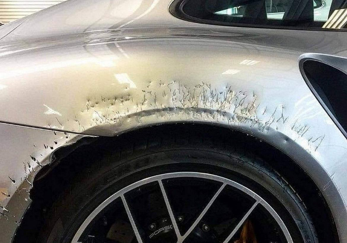 A bored dog chews off the bodywork of a parked Porsche 911 Turbo S worth $250,000 -