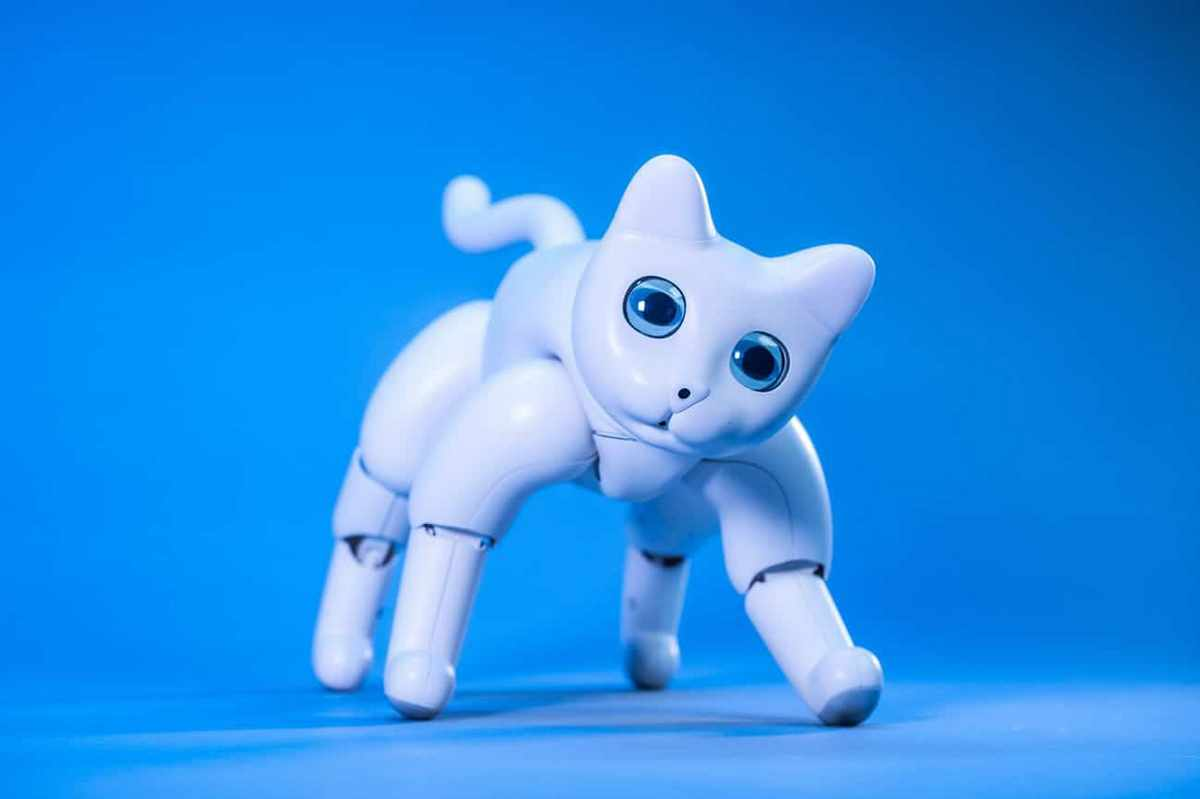 Meet MarsCat, an adorable robotic cat that can respond to your voice and play with you for hours