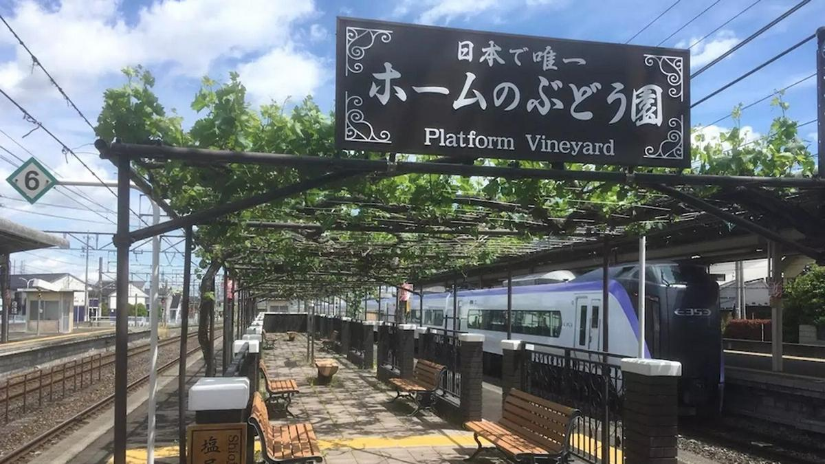 This picturesque train station in Japan is all set to release its first wine made from the vines grown on its platform