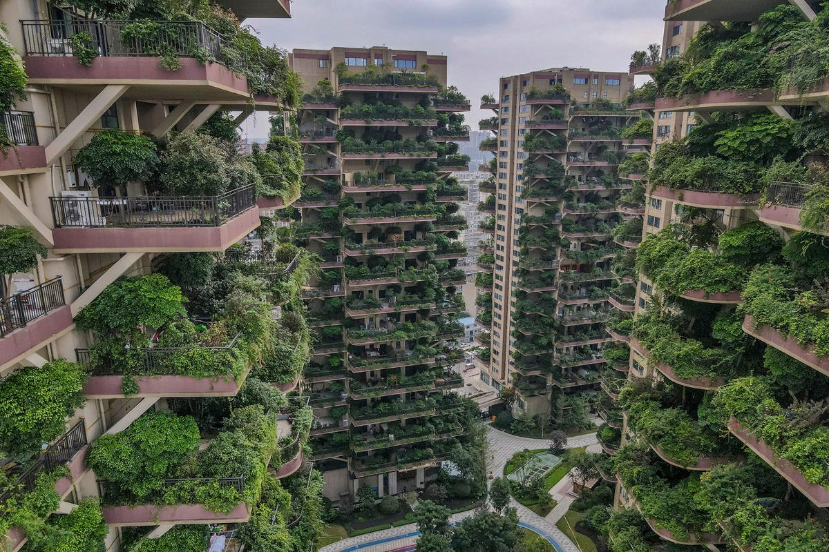 This beautiful 'vertical forest' housing project in China went horribly wrong as residents had to abandon their apartments after the buildings were overrun by plants and mosquitoes